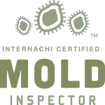 Birmingham mold inspection near me